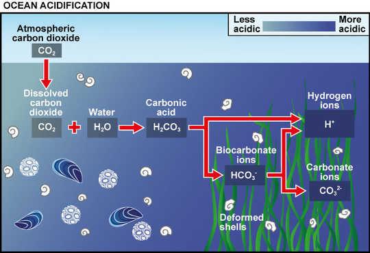 Hoe die oseaan versuring werk volgens die kenners. UK Oseaan Versuur Program