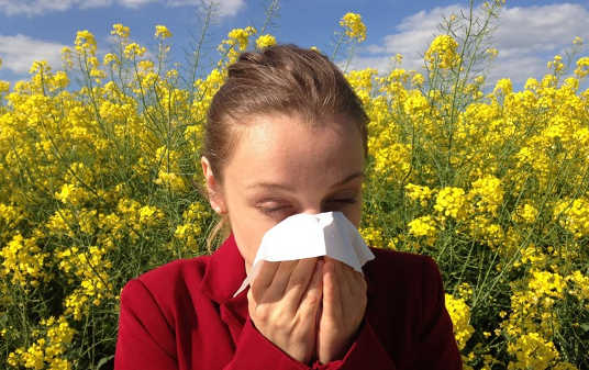 How Our Environment Can Induce Allergies Even Before We're Born