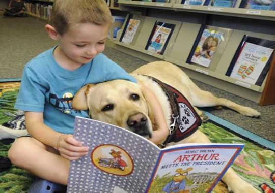 Wie Hunde Kinder zu besseren Lesern machen könnten