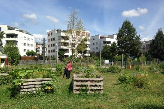 What's The Best Way To Deliver Enough Green Space For Health And Welfare