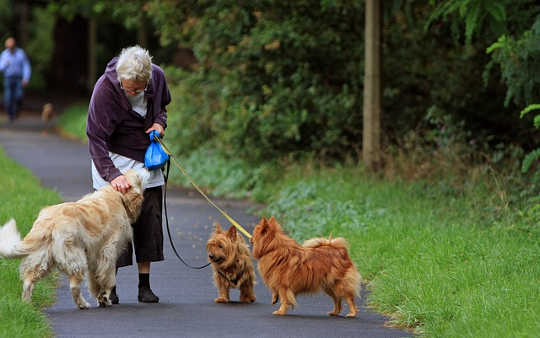 Why More Time Walking Means Less Time In Hospital