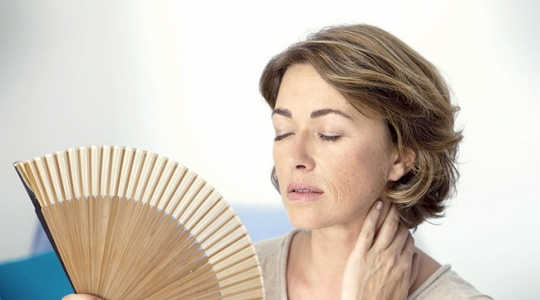 Do Drugs Like Remifemin Ease Hot Flushes And Night Sweats In Menopausal Women?