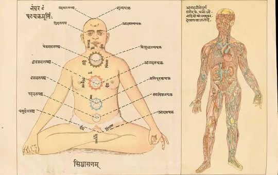 indisk medicin 12 18