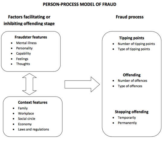 The person-process model. Author provided