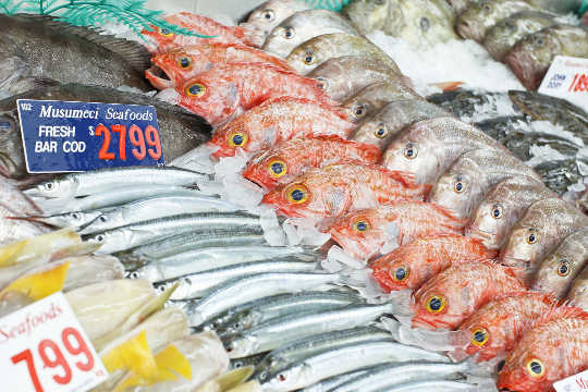 Mislabeled Fish Are Showing Up In Lots Of Sushi