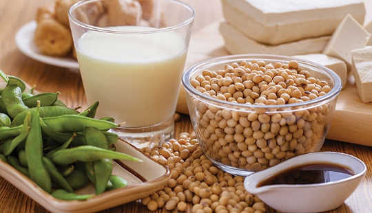 New Research Suggests Soy Protein Could Ease Irritable Bowel Diseases?
