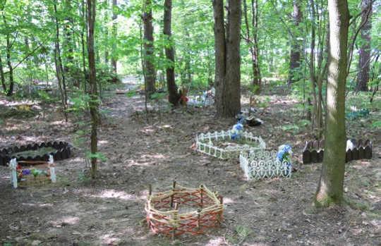 Bagaimana Hutan Perkotaan Menambah Kesehatan dan Kekayaan Kesehatan