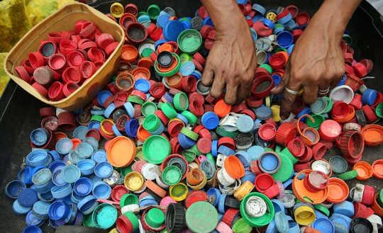 Hur plast från växter kan vara svaret på världens avfallsproblem