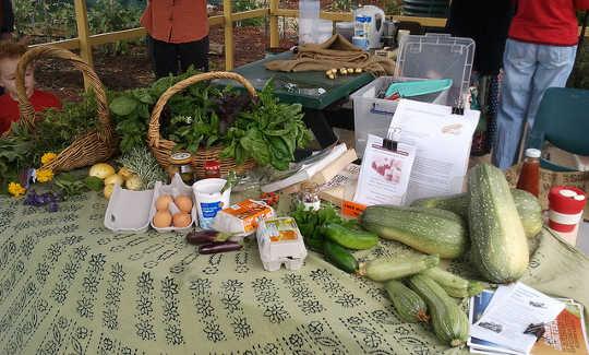 Nachhaltige Ernährung bleibt ein Minenfeld, bis wir die Art ändern, wie wir uns dem Essen nähern
