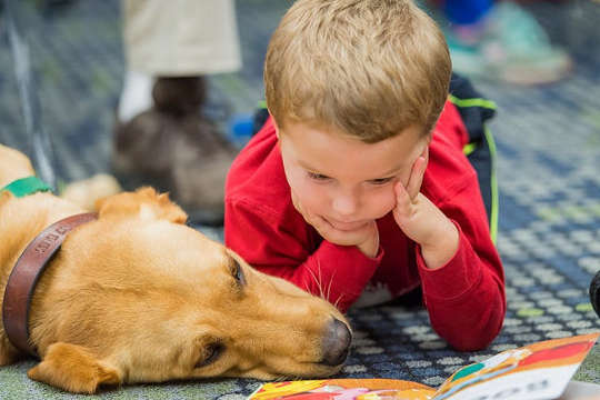 Therapy Dogs Can Help Reduce Student Stress, Anxiety And Improve School Attendance