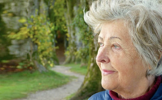 Navigating Life in the Senior Years: Adult Children and their Parents