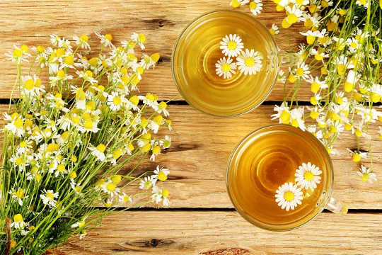 Chamomile Tea May Help Control Diabetes