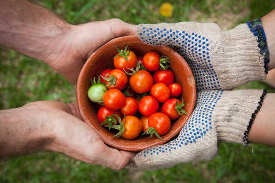 How Community Gardening Improves The Health And Provides A Sense Of Purpose