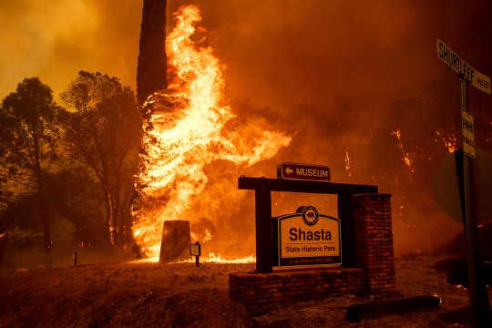"A ""Perfect Storm"" Of Factors Is Making Wildfires Bigger And More Expensive To Control"
