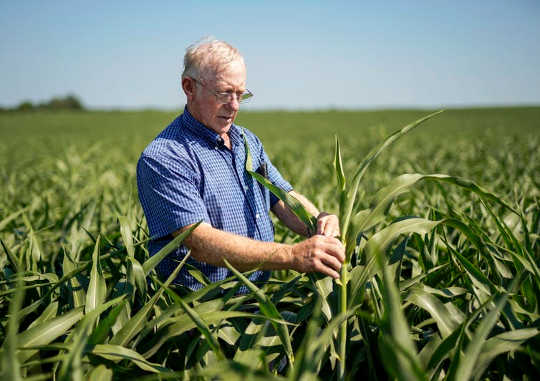 农民和农业经济学家担心,特朗普的贸易政策将使农场损失数十亿美元