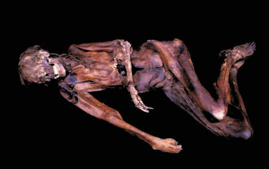 Cultural heritage has a lot to teach us about climate change: Pazyryk male mummy with preserved hair and shoulder tattoos.