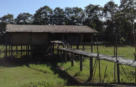 Cultural heritage has a lot to teach us about climate change: Image of an example of a stilted building constructed using local materials on Majuli Island, Assam.