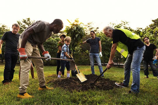 Community activities such as gardening are a key way that green spaces can address loneliness. (How green spaces help combat loneliness)