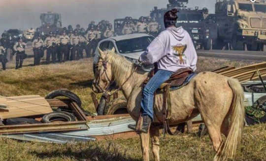 A Native American protester faces police at Standing Rock Reservation in 2016. The campaign against the $3.8bn Dakota access pipeline continues. (The radical story of the native american liberation movement)