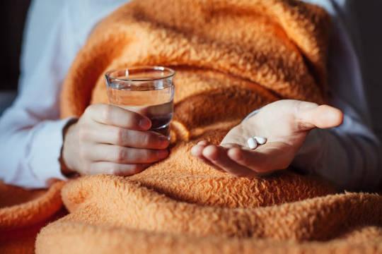 Mikrobiota membantu mengembangkan sistem kekebalan tubuh kita. (Nyali sehat penuh dengan bug)