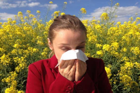 What Are Allergies And Why Are We Getting More Of Them?