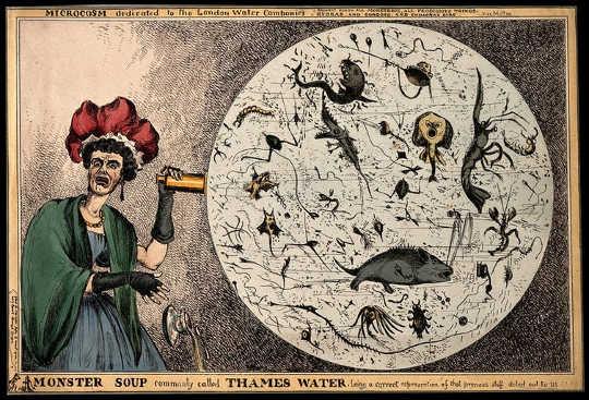 Как капитализм разрушил наши отношения с бактериями