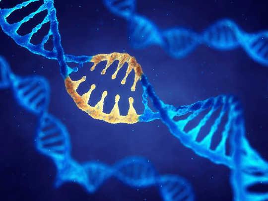 Navorsers Vind 'n Genetiese Oorsaak Dit Skakel Erektiele Disfunksie En Tipe-2 Diabetes