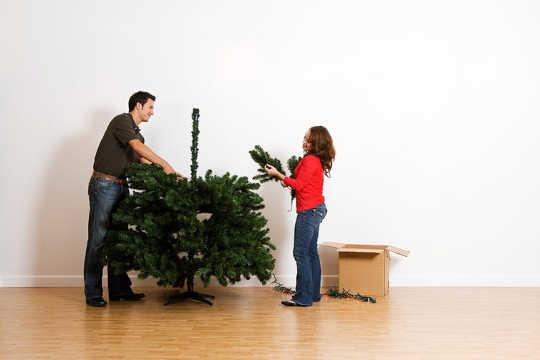 Ikke stress den type juletre å kjøpe hvis du gjenbruk eller kompost