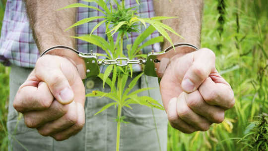 Hvordan Decriminalizing Pot Benefits Young People