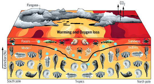 Làm thế nào chúng ta biết biến đổi khí hậu đứng sau sự tuyệt chủng lớn nhất của trái đất
