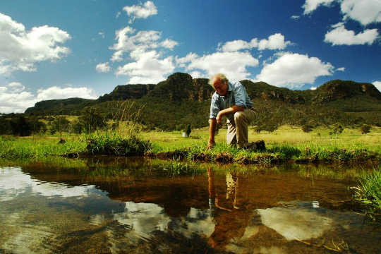 Waarom praat iedereen over Natural Sequence Farming?