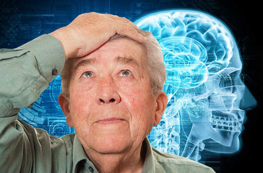 What Happens To The Brain In Aging?