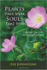Plants That Speak, Souls That Sing: Transform Your Life with the Spirit of Plants by Faye Johnstone.