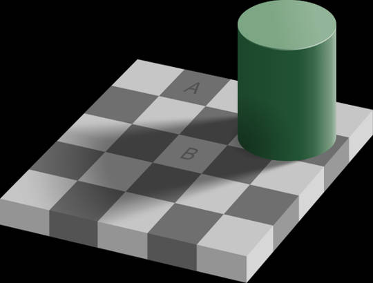 Checker shadow illusion. (why we are not as stupid as we have been led to believe)