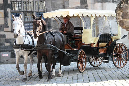 A Life Path Metaphor: Two Horses, A Carriage, A Driver, and A Passenger
