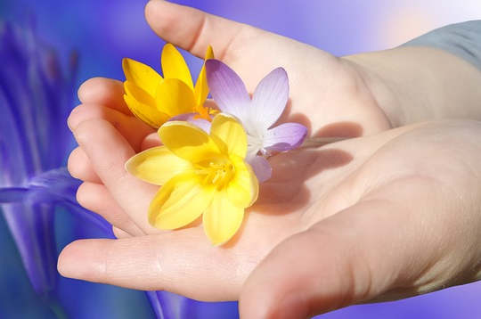 自我的恩赐:贡献 - 服务 - 更广泛的集体