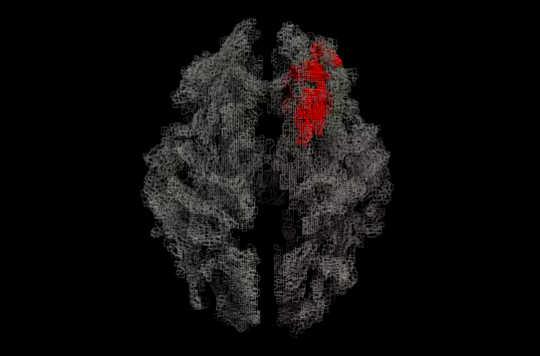 نقشه ماده سفید مغز (رندر ردیابی ردیابی)، با این ناحیه همخوان با خودپنداره در قرمز است. (به همین دلیل برخی از مردم سیمی هستند که خودشان بیشتر از دیگران هستند)
