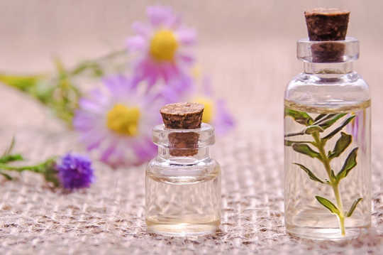 Living in the Now with Essential Oils, Mindfulness, and Meditation