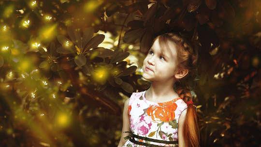 cô gái trẻ nhìn lên đom đóm trên bầu trời