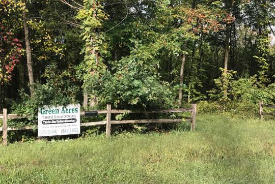 Nơi để nghỉ ngơi: Nghĩa trang xanh và chôn cất sân sau