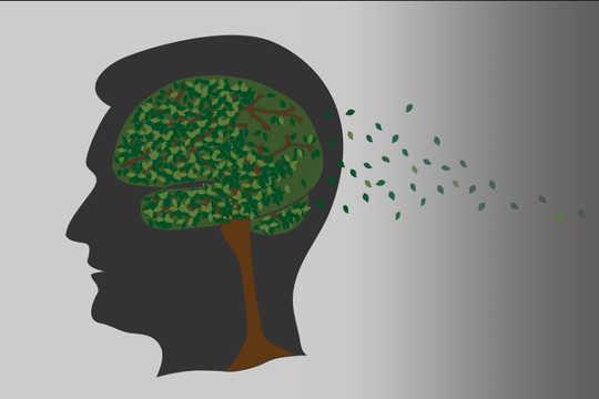 阿尔茨海默病的病理学