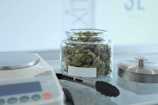 Как канадцы покупают марихуану и добиваются успеха сейчас, когда это законно