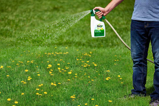 This Common Weed Killer Ups Risk Of Some Cancers By 40%