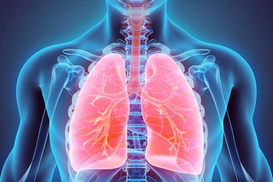 How Your Lungs Are Really Amazing