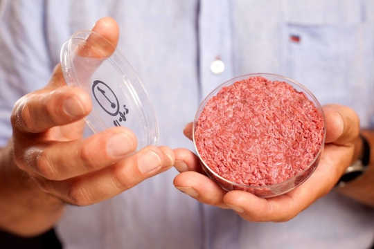 Is Cultured Meat Better Than Animal Agriculture?