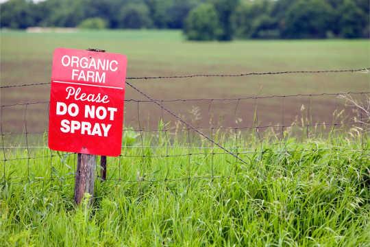 ما هي مخاطر المبيدات المهندسة وراثيا التي تتدلى في التربة؟