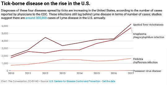 Las garrapatas se propagan mucho más que la enfermedad de Lyme