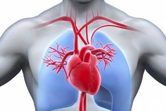 Mengapa 90% Dari Pedoman Jantung Tidak Didasarkan Pada Bukti Terbaik