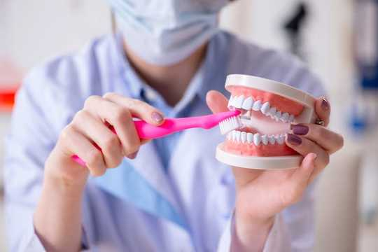 歯をきれいにする頻度は?