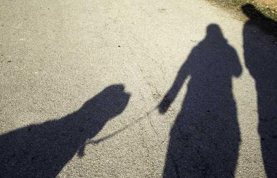 犬が多民族の近隣を社会的に隔離された状態に保つのを助ける方法